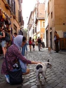 Animalista Untamed stray dog Italy Rome city street