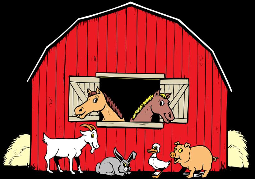 animals-44571_960_720