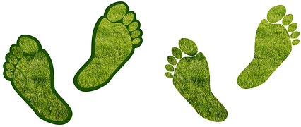carbon footprint reduce green feet