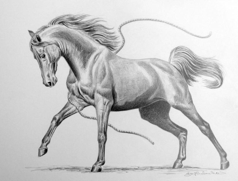 Drawing 034