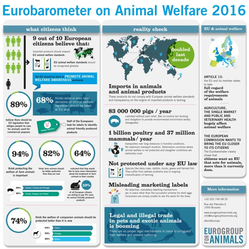Eurobarometer animal welfare 2016 EU Article 13 animal imports live animal exports
