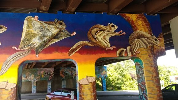 Project manager artist Roger Peet Center for Biologica Diversity Endangered wildlife mural art