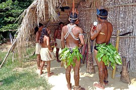 amazon-indians-69589__180
