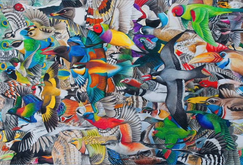 Andrew Tilsley acrylic on paper vegan art plumage colours