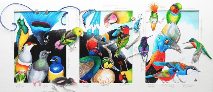 exotic tropical birds andrew tilsley artwork mixed media vegan art