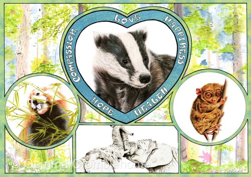 animals wildlife badger lemur elephants big cat love compassion happiness health hope