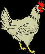 chicken-40898__180