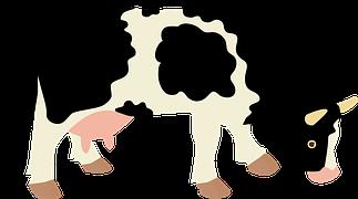 cow-1204968__180