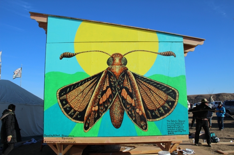 dakota skipper butterfly roger peet art mural standing rock dapl