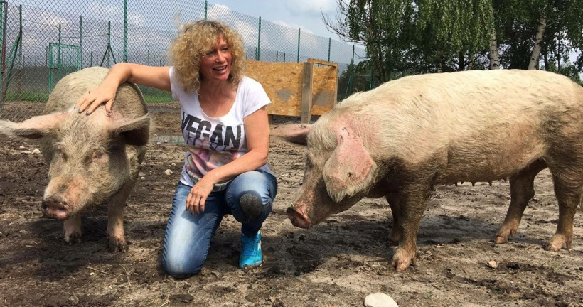 Juliet Gellatley Viva! pigs animal rights vegan