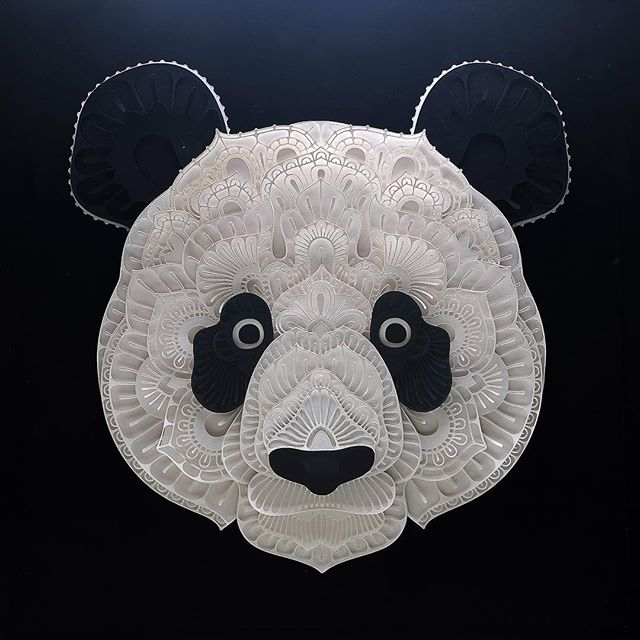 And to cap off this series is a papercut of a Giant Panda. It was still listed as an endangered species when I started this project last December 2016. In 2017 Giant panda is no longer endangered. There's still hope for humanity after all :) You can purchase the artwork at https://www.aoklife.com/auctions/109/Patrick-Cabral/Panda or follow the link on my profile. I'm donating 50% to @wwfphilippines Find out more about WWF's initiative on Giant Panda at https://www.worldwildlife.org/species/giant-panda Follow @Aoklife to find out how you can help Charitable Institutions raise funds.