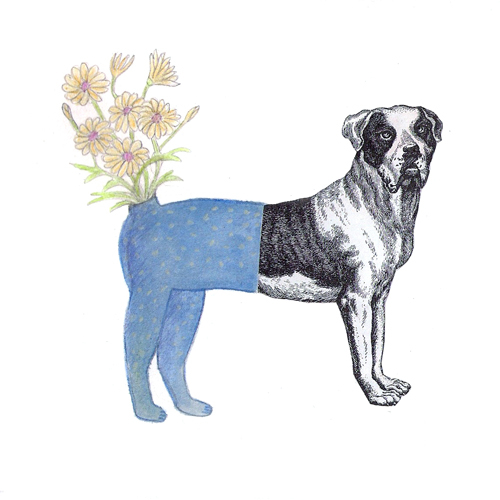 claude_jones_daisy-dog_drawing_15x15cm_2009