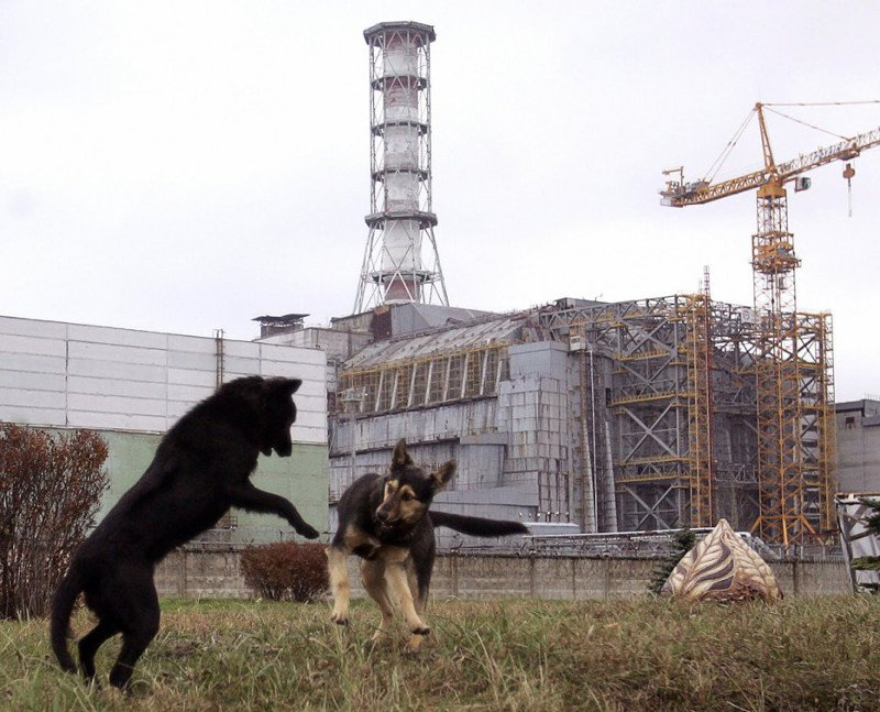 abandonedchernobyl