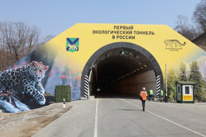 narvinskii-pass-tunnel