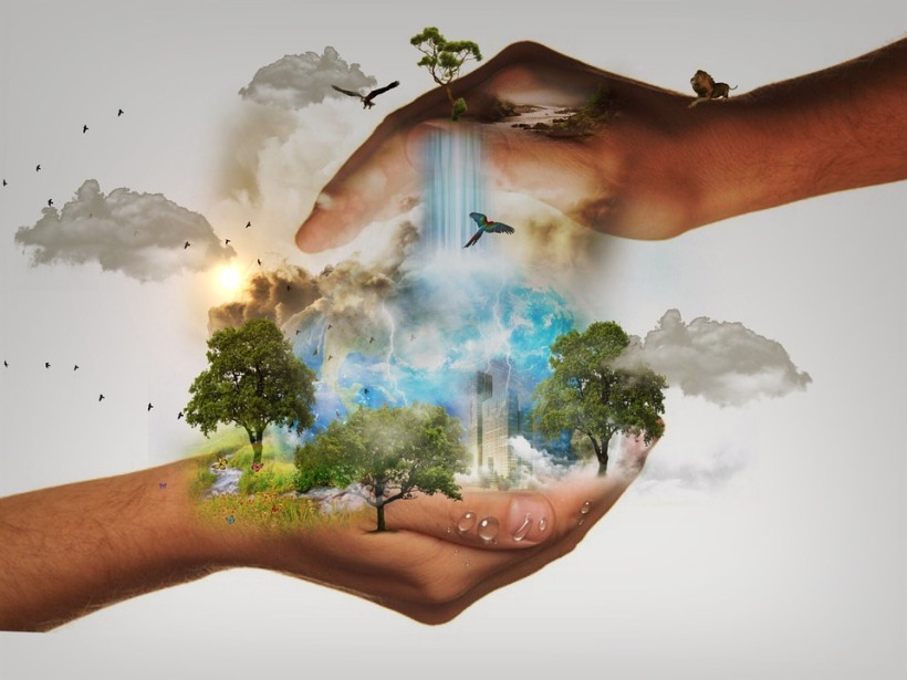 planet earth hands conservation responsibility wildlife environment trees