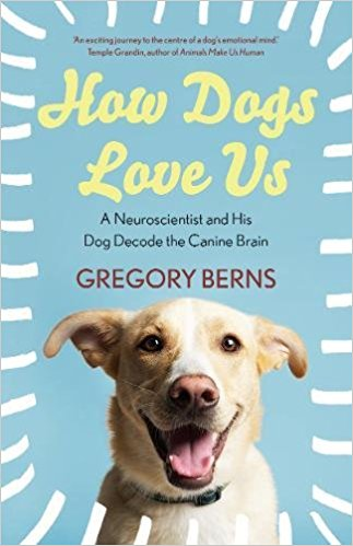how dogs love us gregory berns neuroscientist book