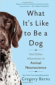 book gregory berns animal neuroscience what it's like to be a dog