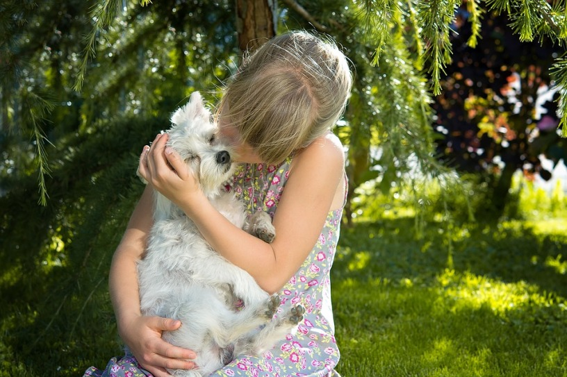 girl with dog love pet friendship connection