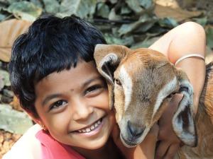 boy kid goat love hug friendship friends