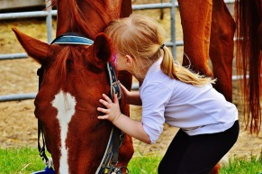 girl kissing horse kiss love connection friendship