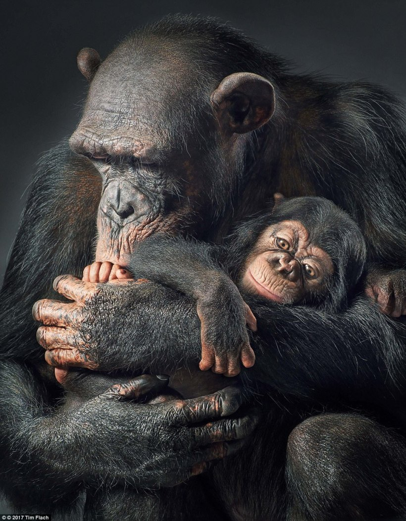 Ruma & Vali Mother & Son Share a Tender Moment Tim Flach