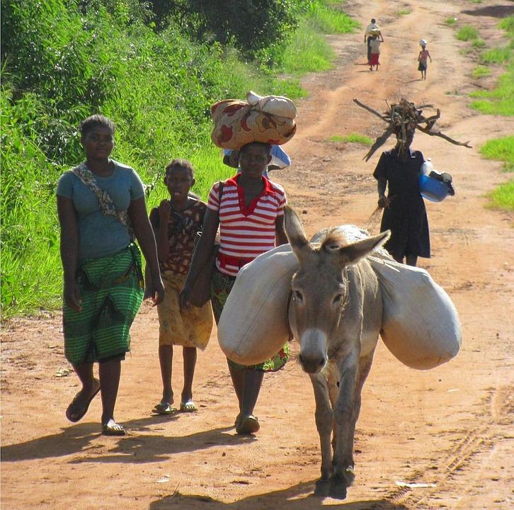 mozambique-80752_960_720