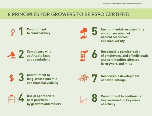 rspo-principles-and-criteria