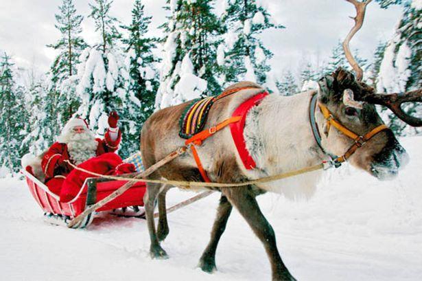 reindeer santa christmas snow